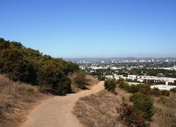 Baldwin Hills Los Angeles County First Team Real Estate