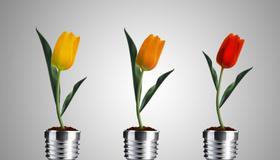 Energy Saving Tips To Save You Green
