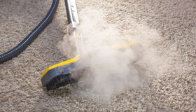 Tips for Quick and Easy Carpet Cleaning