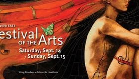 Top Chicago Art Festival This Weekend