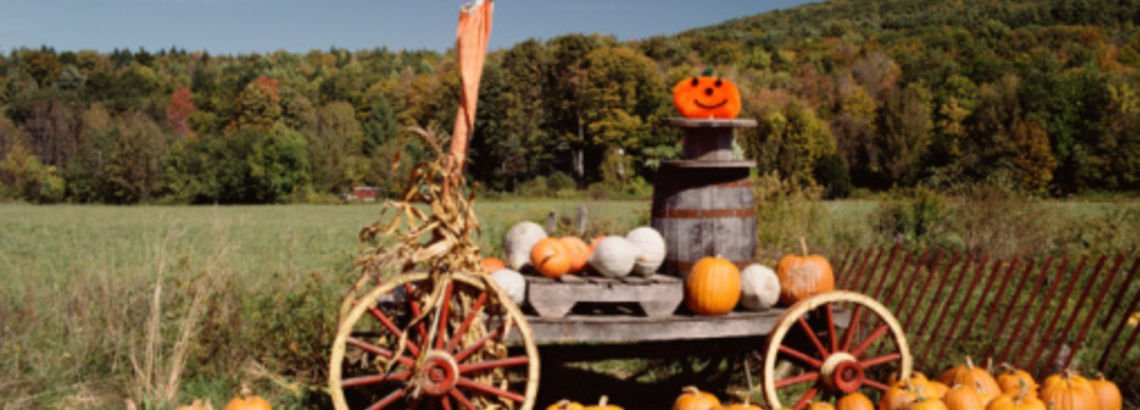 Family-Friendly Halloween Festivals