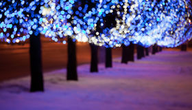 Kick Off the Season at the Magnificent Mile Lights Festival