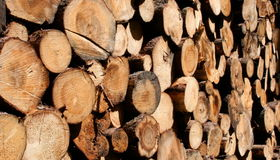 How To Choose Great Firewood