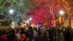 Don't Miss ZooLights