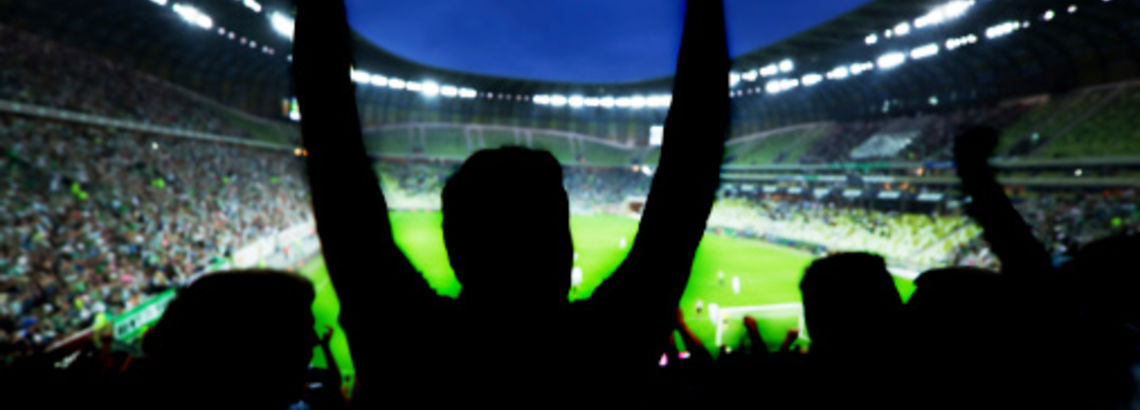 Chicagoland's Best Local Sports Teams