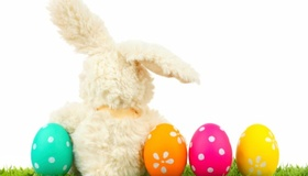 Your Guide to Easter Bunny Brunch