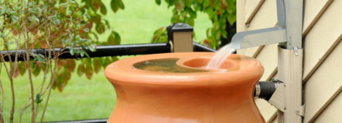 Natural Garden Remedies