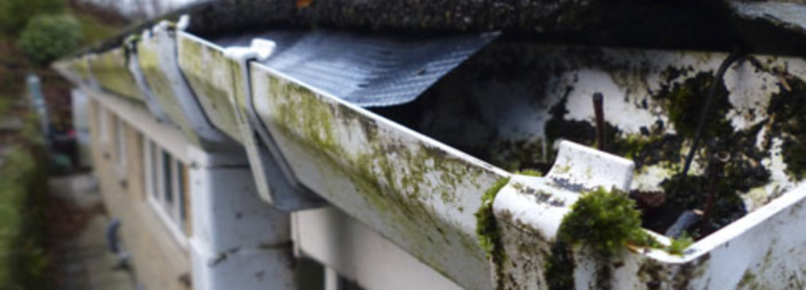 Gutting Your Gutters