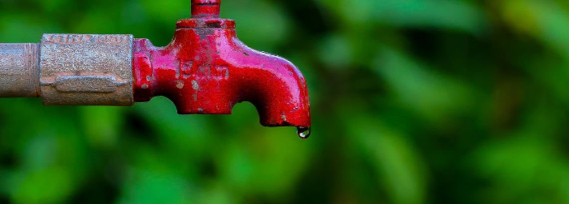 5 Smart Ways to Save Water in the Summer
