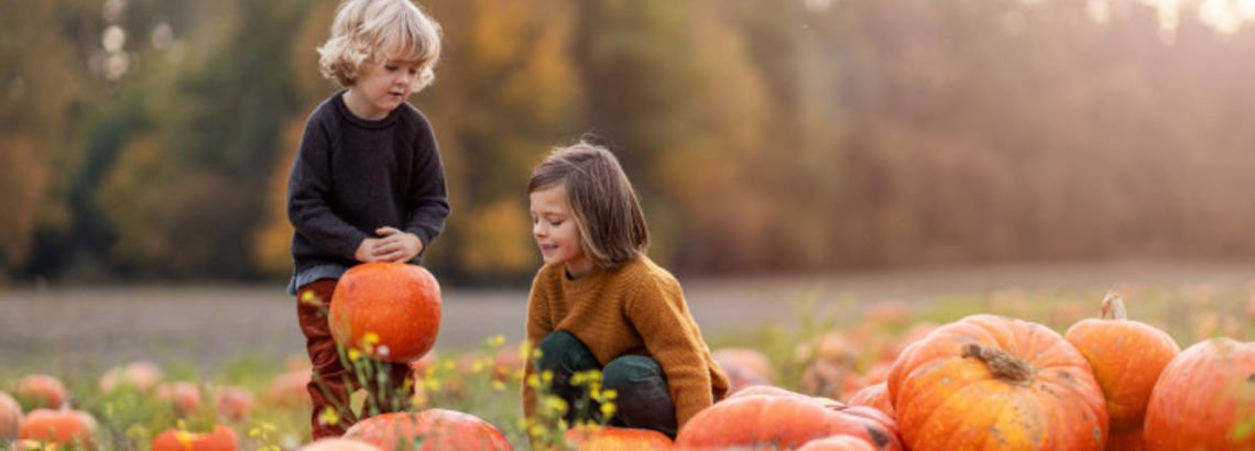 Halloween From Home: 7 Fresh Ideas for 2020