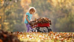 12 Creative Fall Craft Ideas for the Whole Family