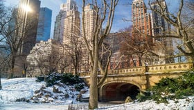 Where to Find Gorgeous Winter Landscapes Around Chicagoland