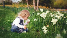7 Sustainable and Eco-Friendly Lawn and Garden Ideas