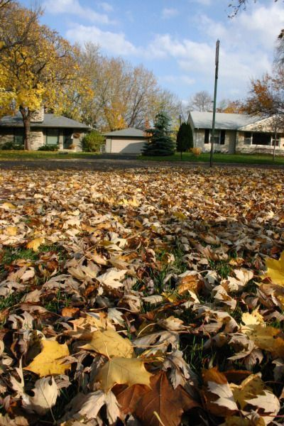 Preparing Your Oakland County Home For The Fall Season