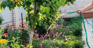 garden watering in oakland county michigan