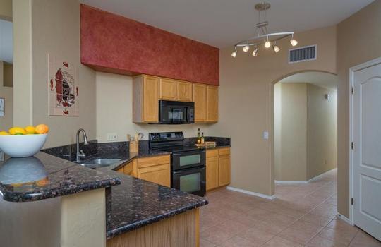 11259 N Sawtooth Road, Oro Valley, AZ 85737 (10)