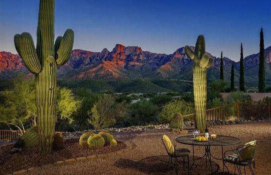 11530 N Skywire Way, Oro Valley, AZ 85737 (32)