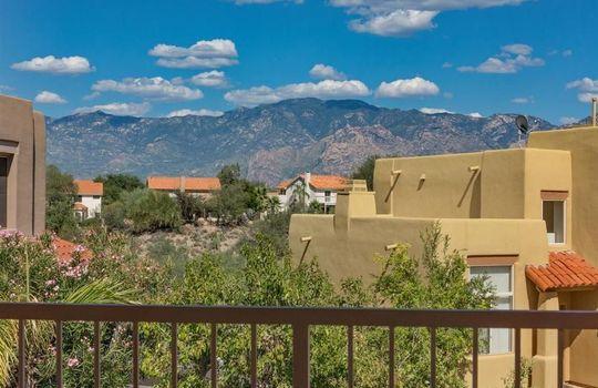 11652 N Mineral Park Way, Oro Valley, AZ 85737 (21)