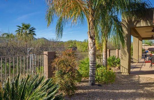13311 N Regulation Drive, Oro Valley, AZ 85755 (20)