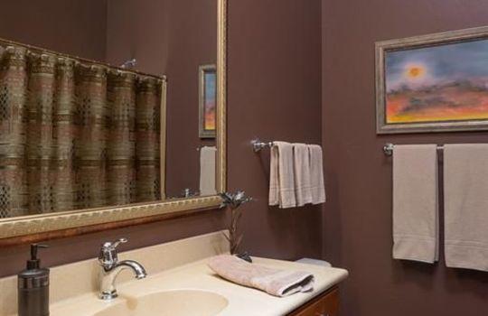 13696 N Tessali Way – Guest Bath 1