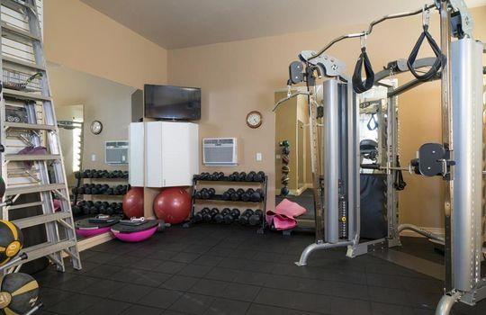 13696 N Tessali Way – Gym
