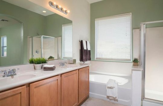 13737 N High Mountain View Place – Master Bathroom 1