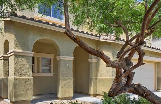 1686 W Green Thicket Way Tucson AZ  (19)