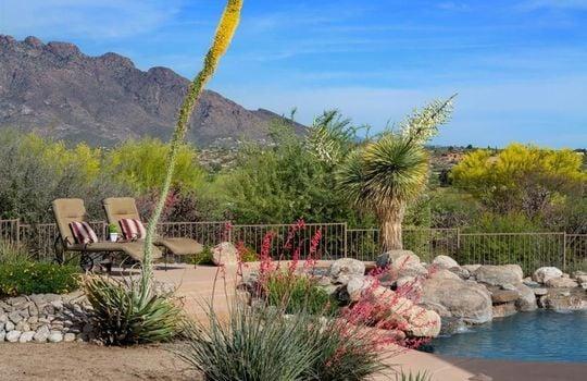 1902 W Camino Bajio, Oro Valley, AZ 85737 (36)