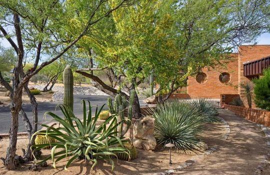 1902 W Camino Bajio, Oro Valley, AZ 85737 (4)