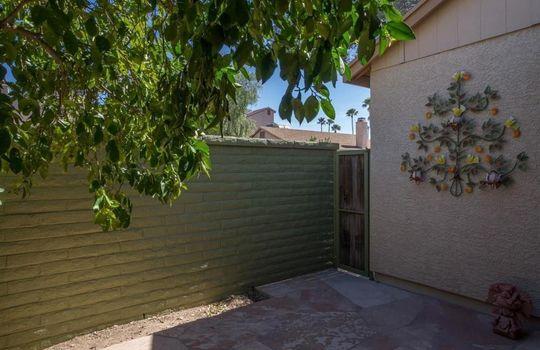 2447 N Palo Dulce Drive, Tucson, AZ 85745 (25)
