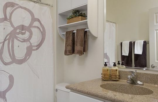 3451 W Wing Tip Drive – Guest Bathroom 2
