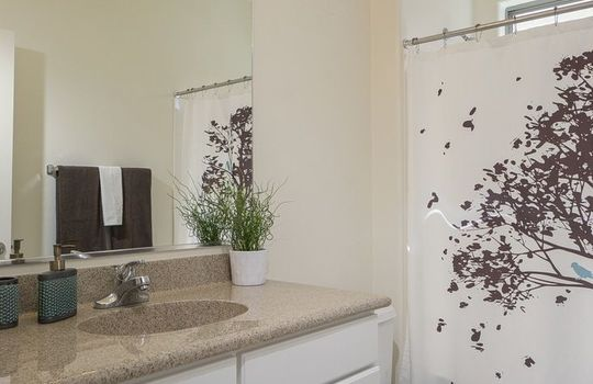 3451 W Wing Tip Drive – Guest Bathroom