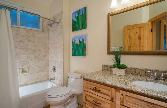 520 W Apex Court – Guest Bathroom