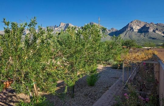 554 E Channel View Place Oro Valley AZ 85737 (23)