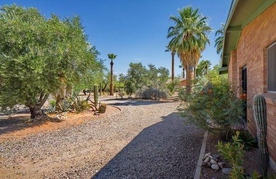 7101 N Pampa Place, Tucson, AZ 85704 (6)