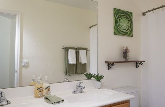 7366 W Silver Sand Drive – Guest Bathroom