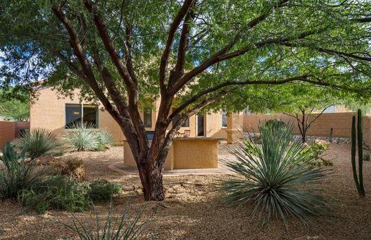 8067 N Faded Leaf Drive, Tucson, AZ 85743 (17)