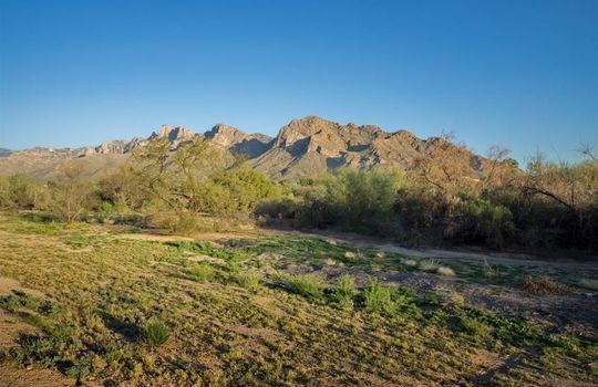 901 W Annandale Way, Oro Valley, AZ 85737 (2)