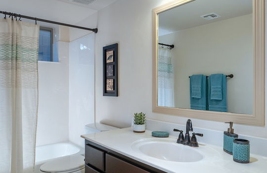 Full Guest Bath (Lower Level)