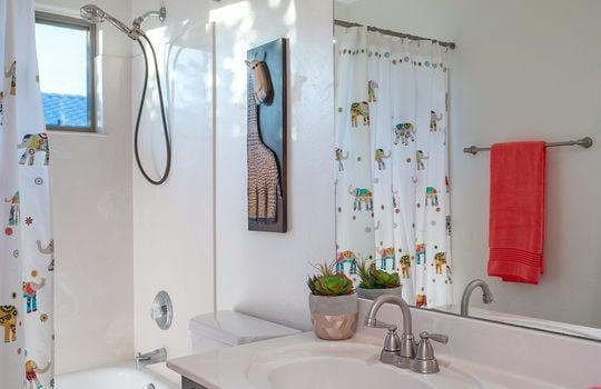Full Guest Bath (Upper Level)