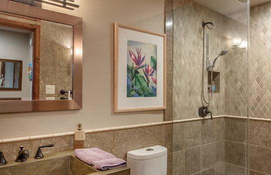 Guest bath-Lower Level