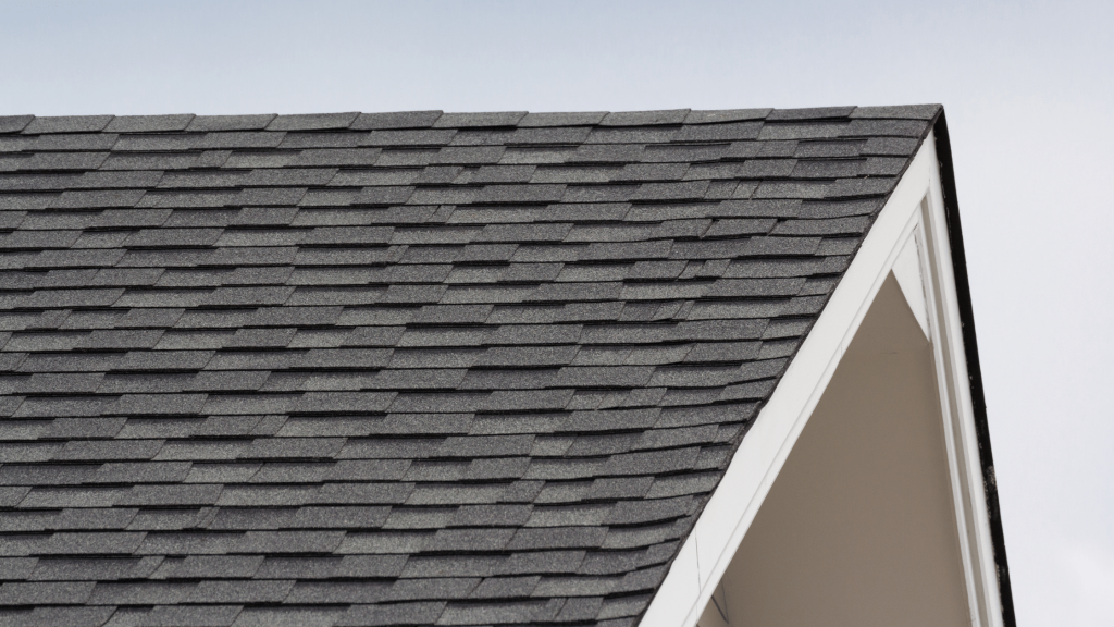 March Home Maintenance Tasks - Roof Maintenance