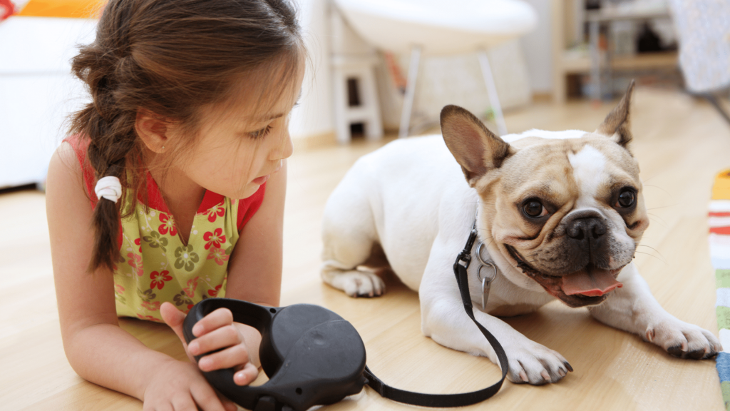 Pet-Friendly Home Blog - Small Child with Bulldog on a Leash