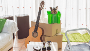 Moving with Pets Blog