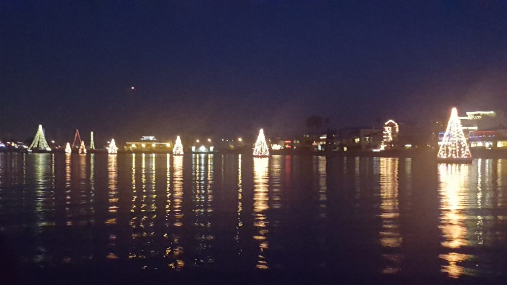 Lights strung together to look like Christmas trees float on Alamitos Bay.