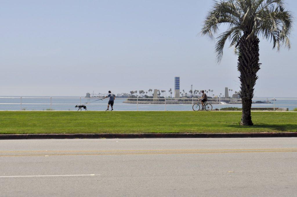Long Beach Dog Parks