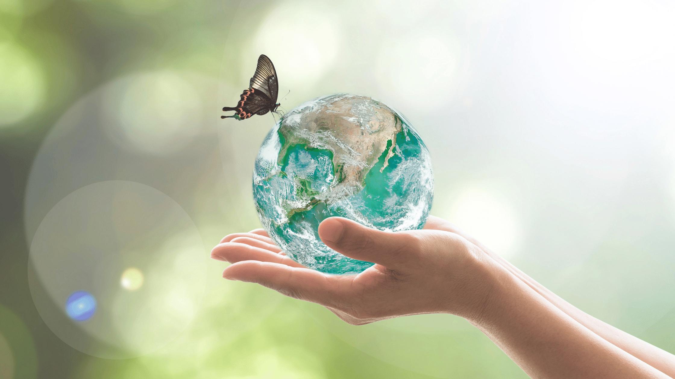 Eco-Friendly Blog