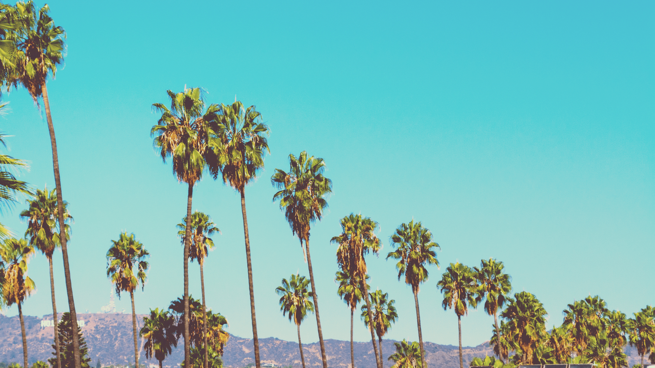 California Migration