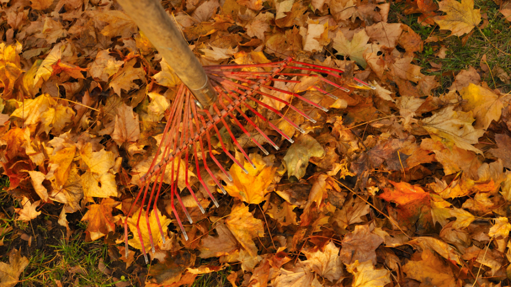 Selling Home Fall - Canva