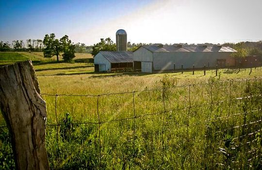 Stone-homes-for-sale-Wake-Robin-Kentucky-115